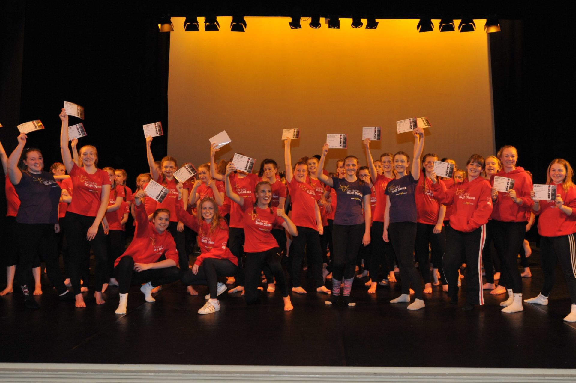 Platform Day East Riding Youth Dance Case Study